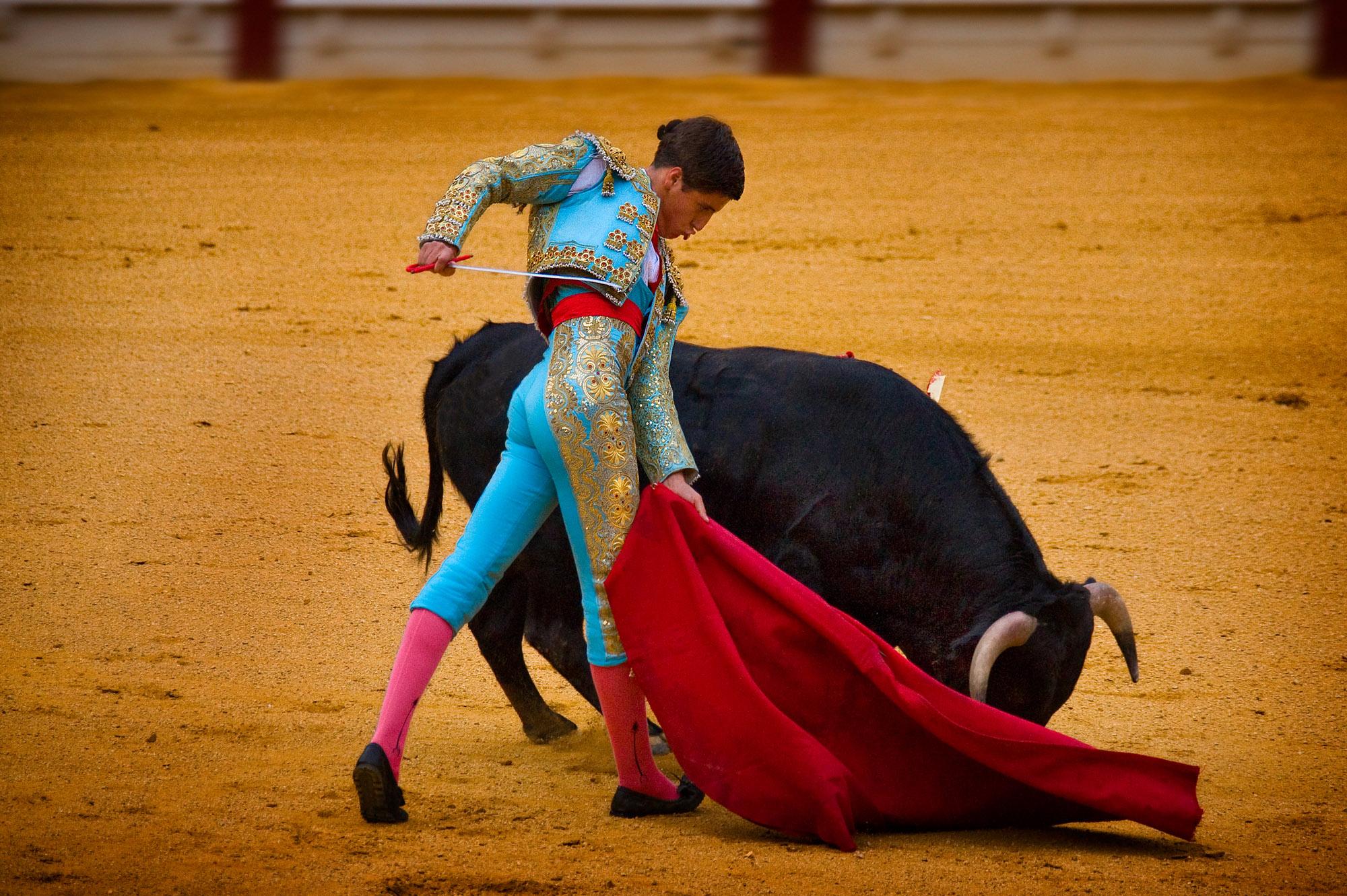 Bullfighting in a Hostile Age