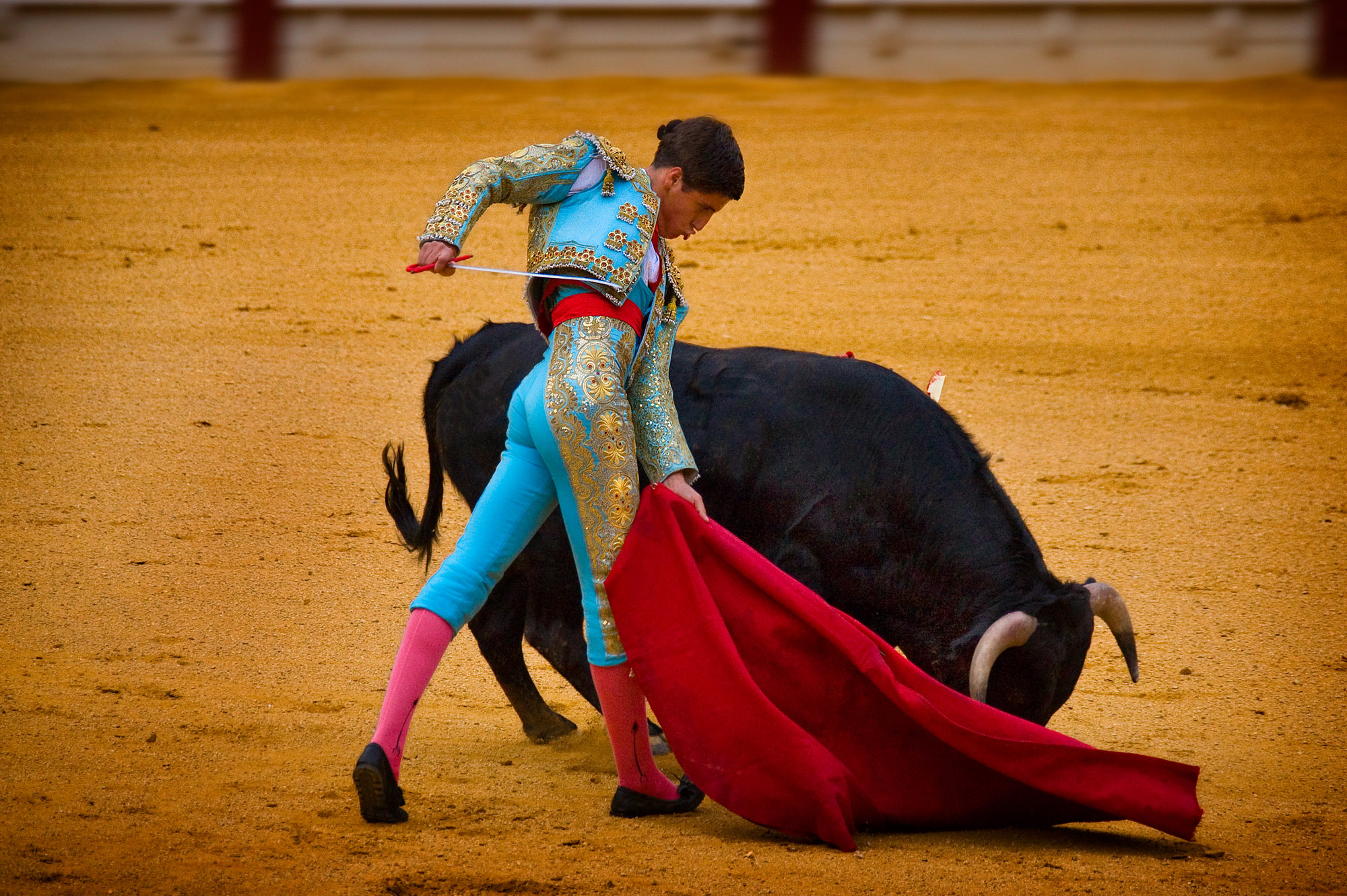bullfighting Bullfighting, national sport and spectacle of spain called the corrida de toros in spanish, the bullfight takes place in a large outdoor arena known as the plaza de toros the object is for one of the.