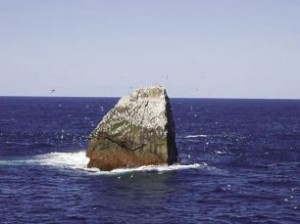 "The disputed ""territory"" of Rockall Island in the North Atlantic"
