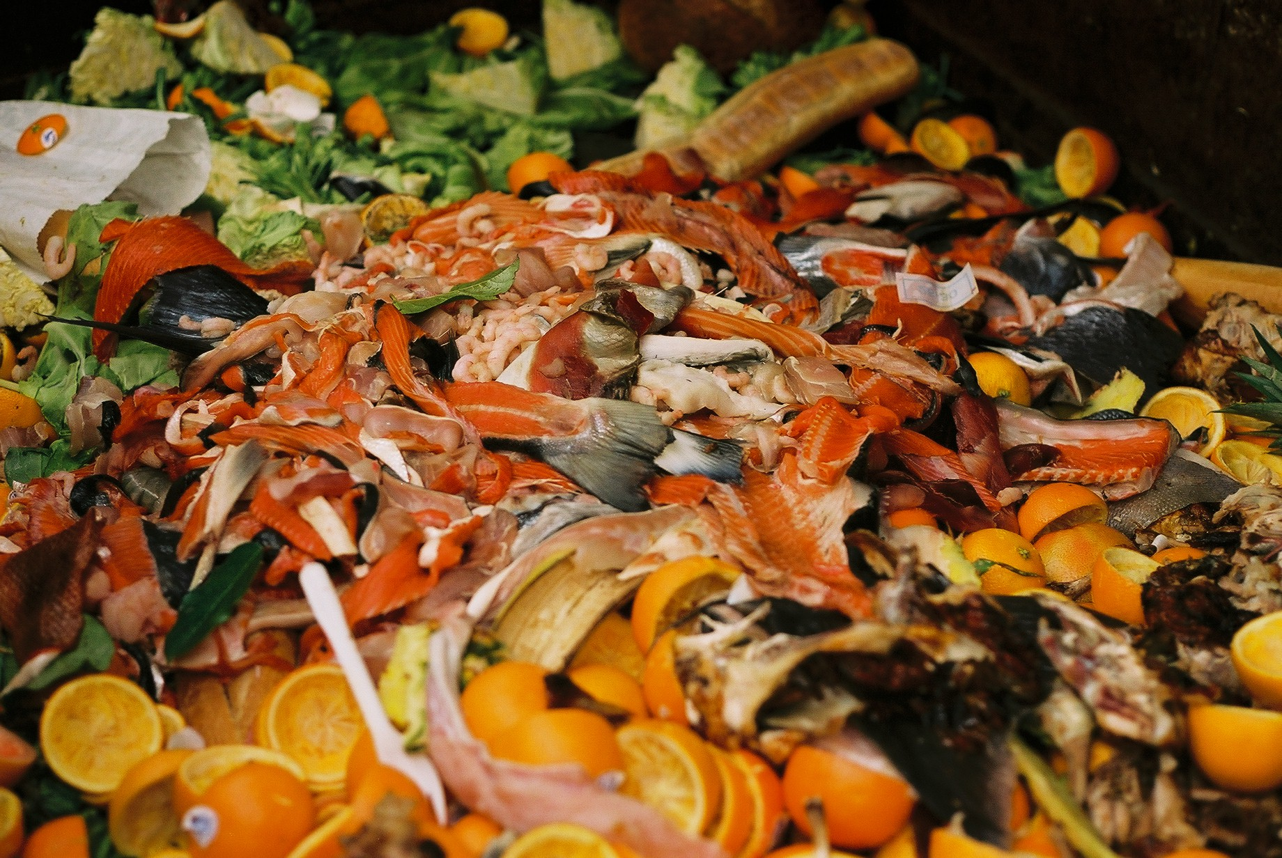 Models for Reducing Food Waste